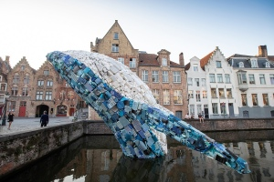 The Bruges Whale by STUDIOKCA
